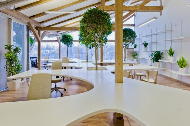 Modern-Working-Space-Featuring-Living-Trees-and-Unique-Desk-Unit
