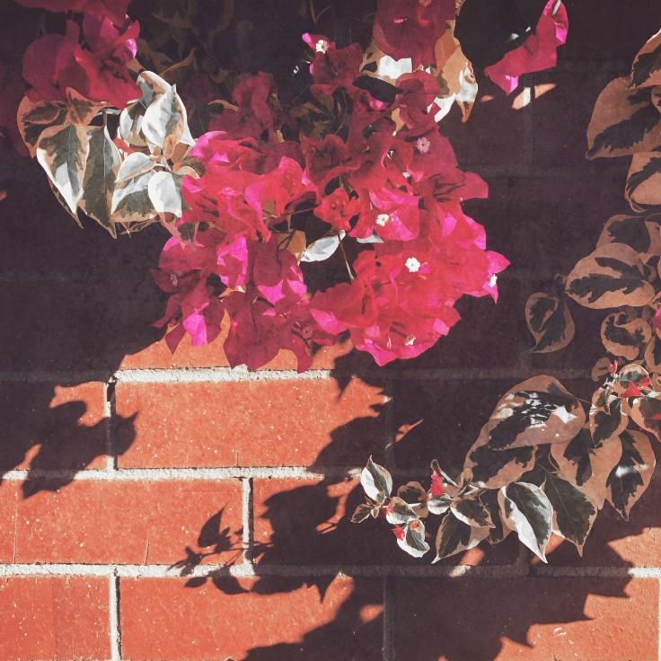 Flower Brick